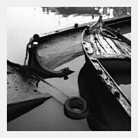 Clicca per ingrandire - Rosso Foto: Giuliano Brandoli