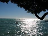Castiglioncello mare