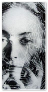 Dora Maar -[Click to enlarge image]