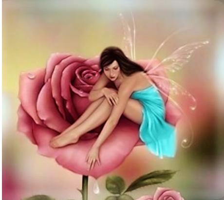 La rosa e la sua storia ma vi for La sua e la sua costruzione